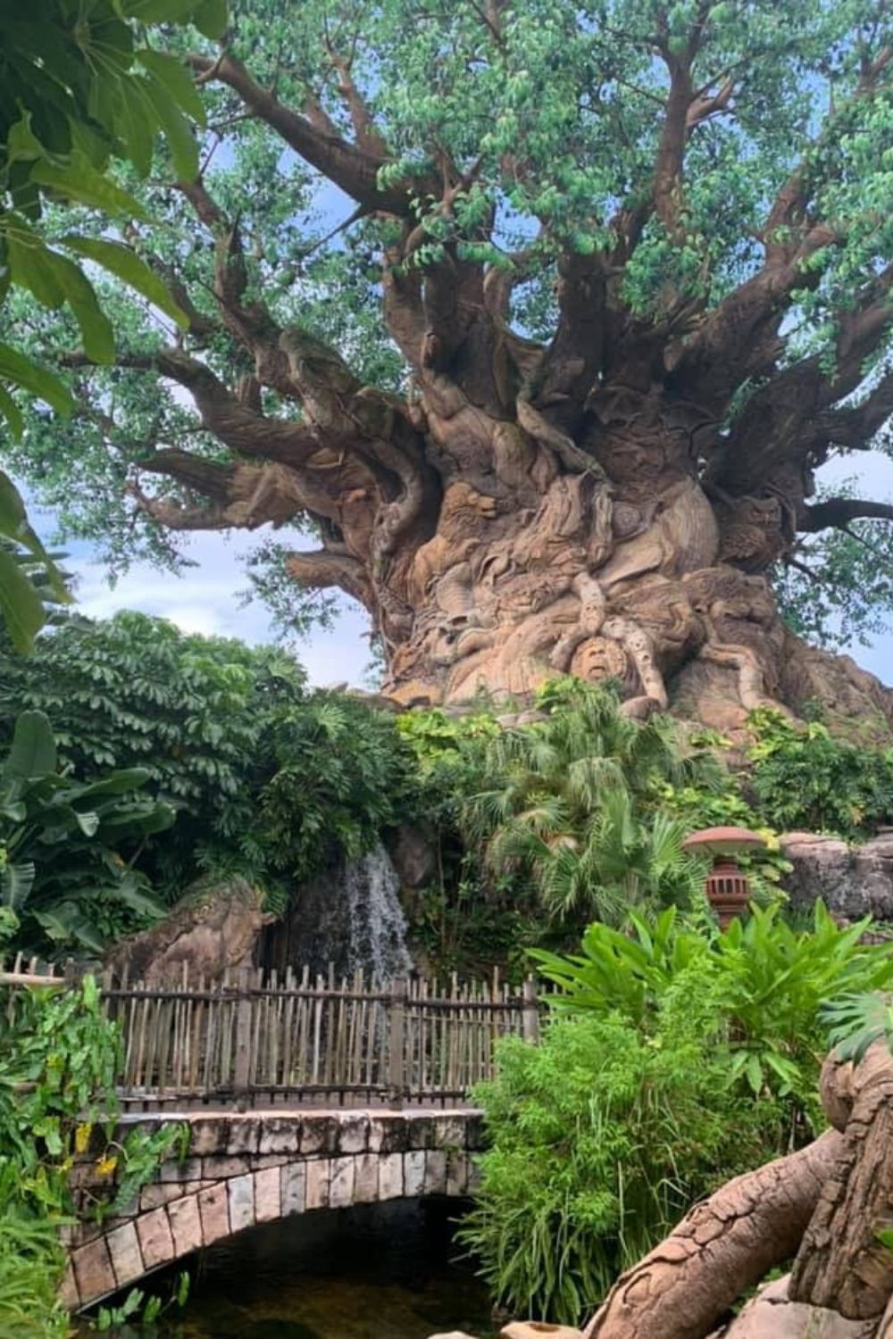Disney World in a Day? Yep, it's possible. If you only have one day at Walt Disney World and you want to get the most out of it, get yourself a park hopper ticket and follow these basic guidelines. #disneytips #disneyplanningtips #disneyworld