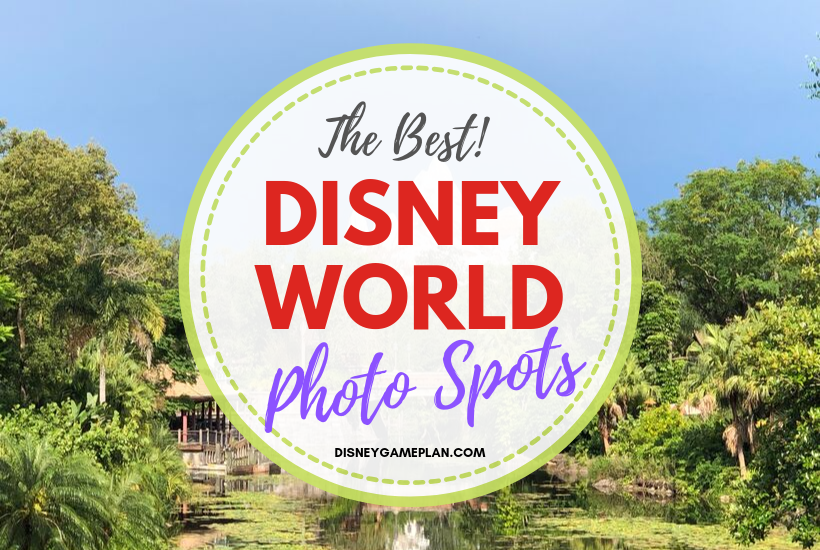Disney World Picture Spots: The Top Locations in All Four Parks