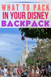 Wondering What to Pack for Disney Parks? Pack These Essentials in your park bag before you head to Disney World for the day.