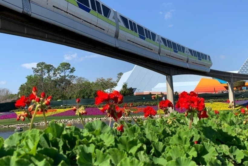 10 Things To Do At Disney World Without A Ticket Feature