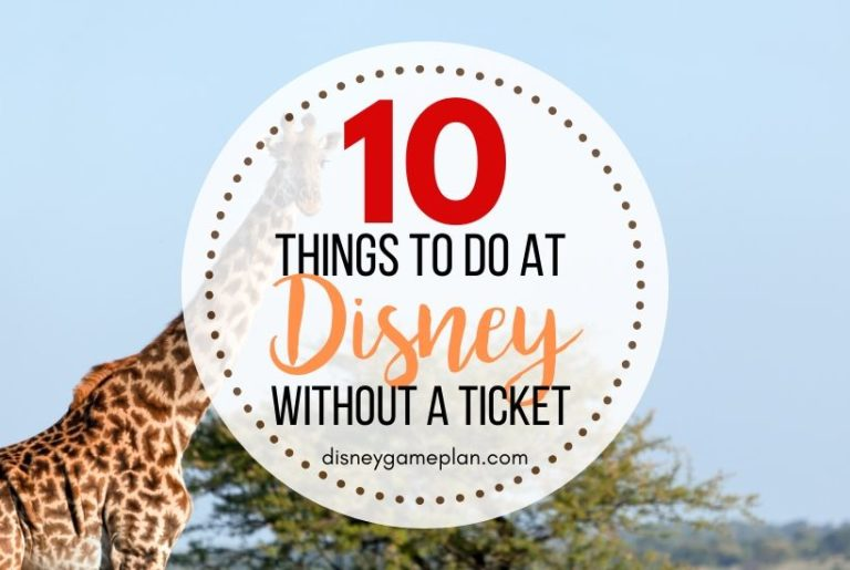 Disney World Activities to Do Outside the Parks