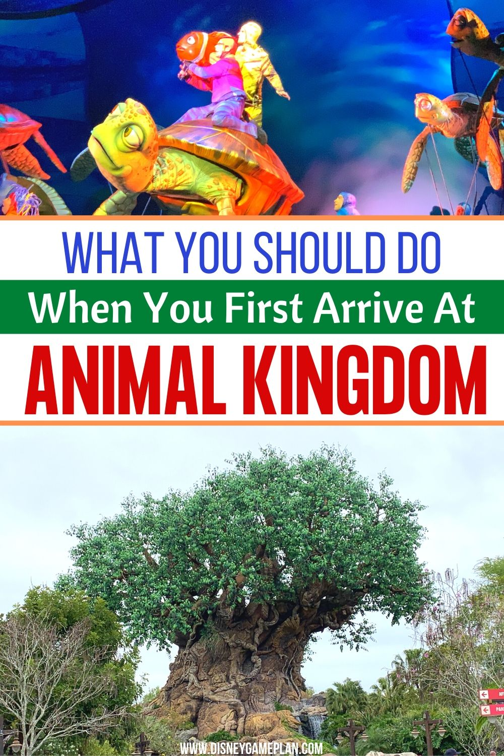 Disney's Animal Kingdom is by far the most unique park at Disney World. Follow these tips on What You Should Explore When you first arrive. Animal Kingdom at Disney World is a large park with so much to see and do. Checkout these helpful Animal Kingdom tips on what you should see and do as soon as you get there. #animalkingdom #disneyplanningtips #disneyworldhacks