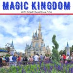 The Disney Magic Kingdom park is a world of adventure and fantasy. It's the quintessential Disney experience starting with a stroll right down the middle of Main Street USA. There is a lot of ground to cover in this park and it's important to start on the right footing. Here are suggestions for what you should do when you first arrive at the Park. #disneyworld #magickingdomtips #disneyworldtips