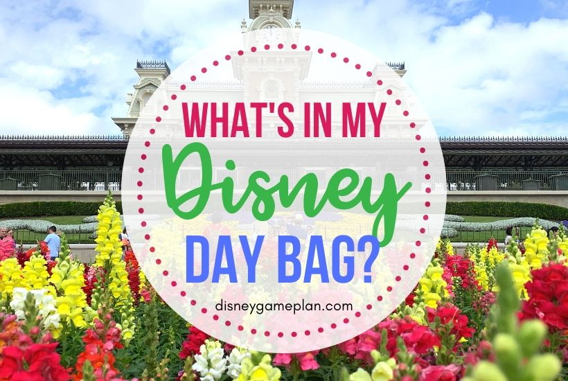 What's in My Disney Day Bag